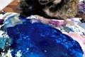 """""""Η Σουσού αγαπάει το μπλε"""""""